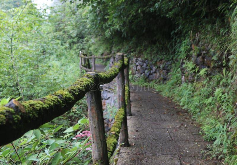 Valle di Enshi fotografie stock libere da diritti