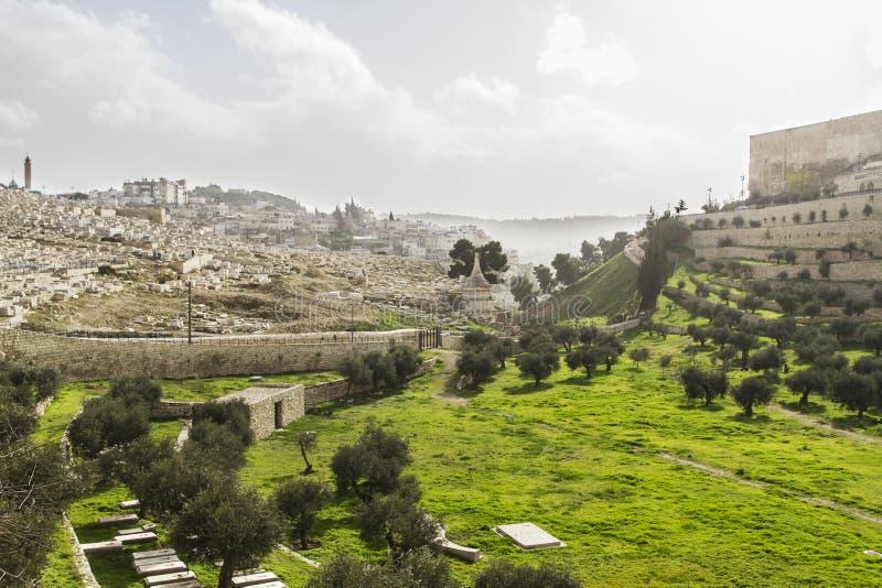 Valle di Kidron gerusalemme immagini stock