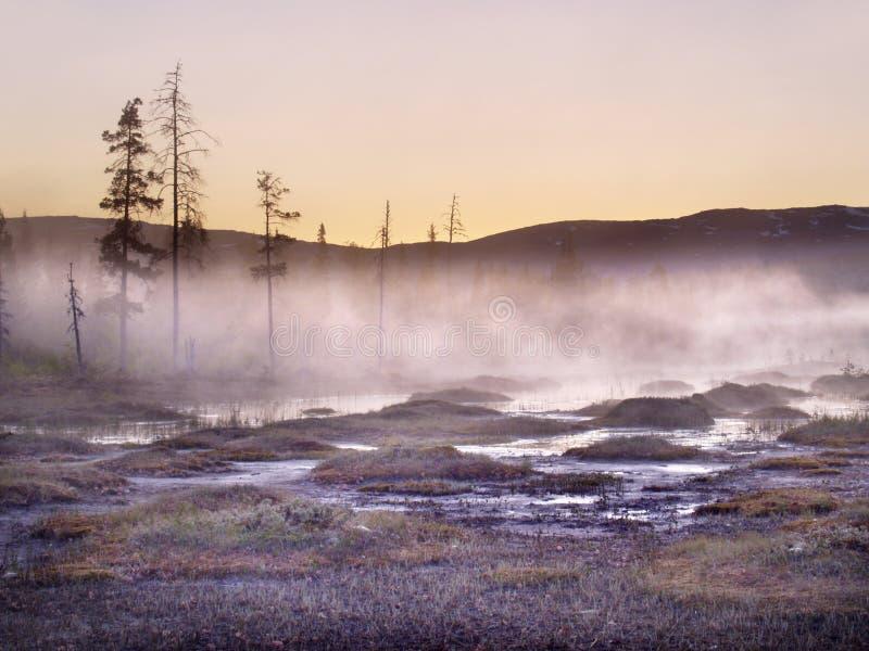 Valle di Lurudalen, Norvegia, Scandinavia fotografie stock libere da diritti