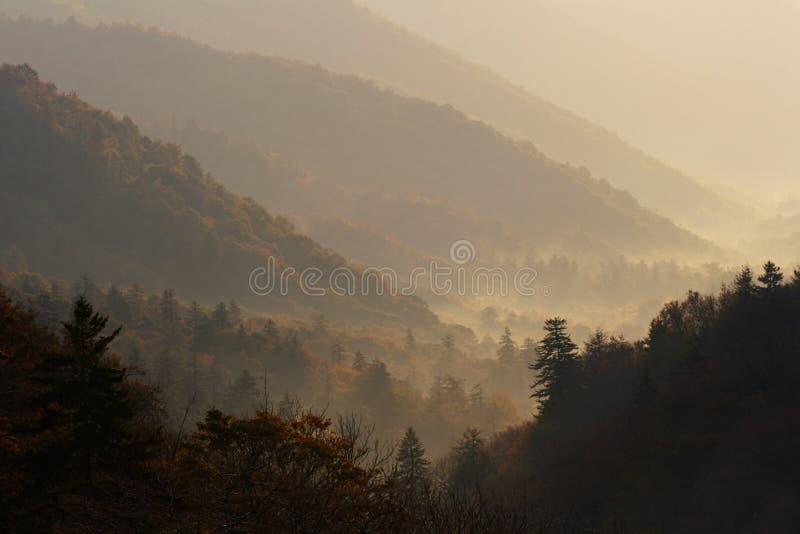 Valle Di Mattina Fotografia Stock Libera da Diritti