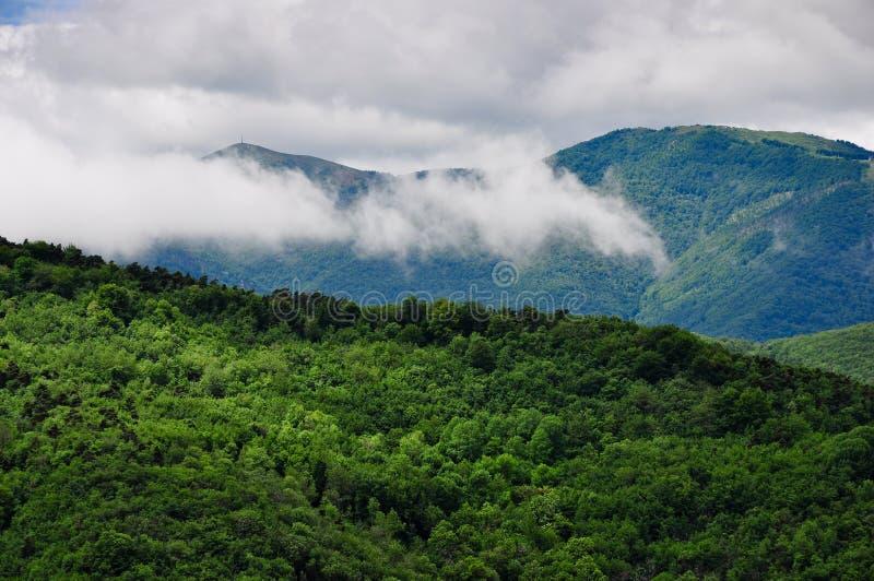 Valle di Mongia in Piemonte, Italia fotografie stock libere da diritti