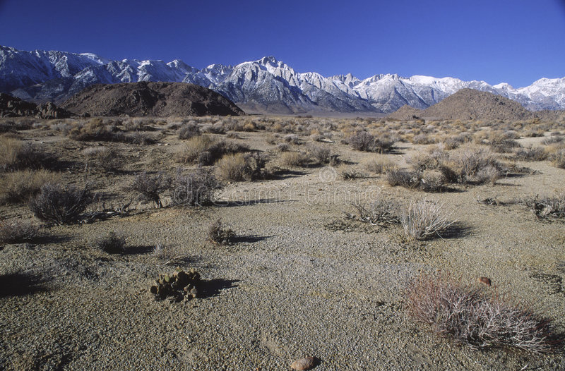 Valle di Owens e sierra montagne aride di Nevada fotografia stock