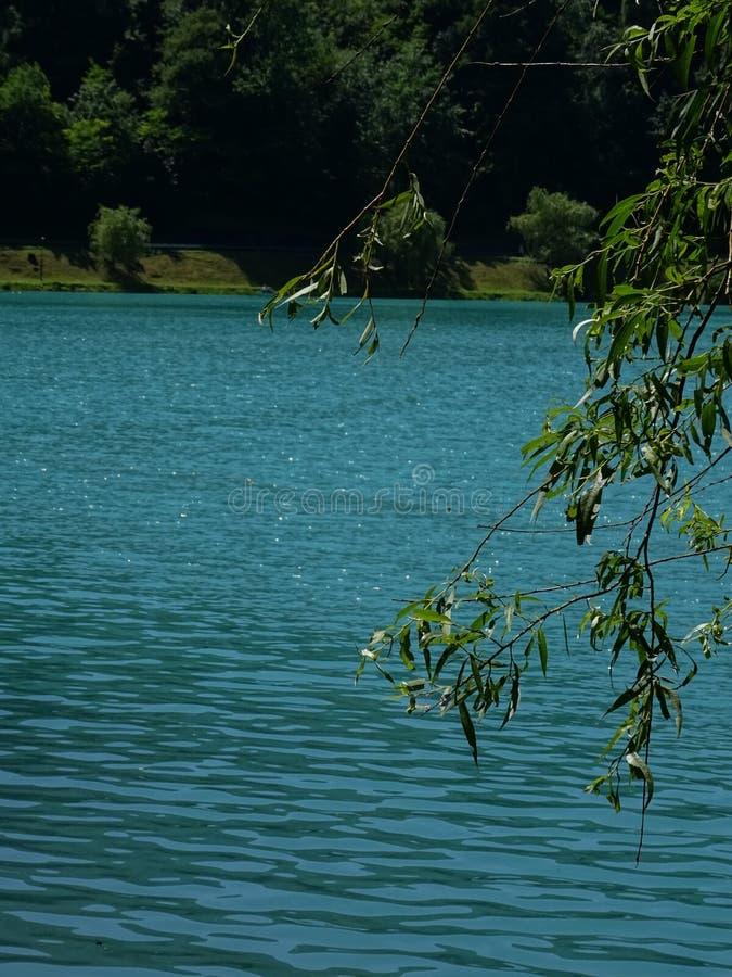 Valle di Soca, Slovenia fotografie stock libere da diritti