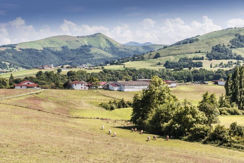 Valle e collina in Pirenei francesi Aquitaine Francia immagini stock