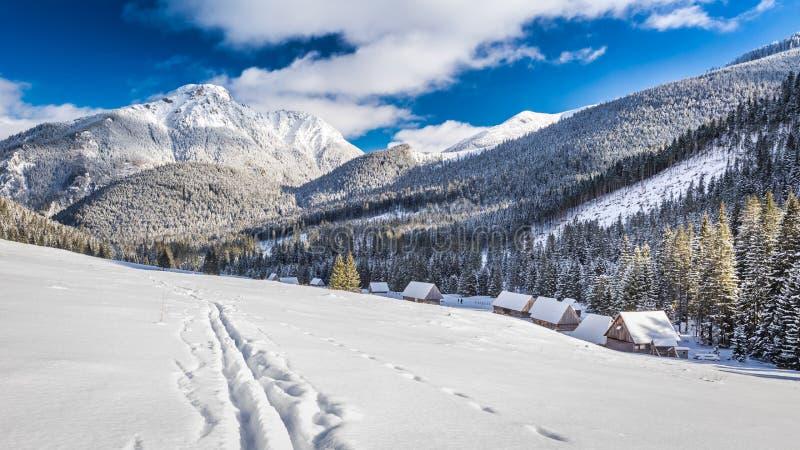 Valle en la salida del sol en el invierno, montañas de Tatra de Tatra imagen de archivo