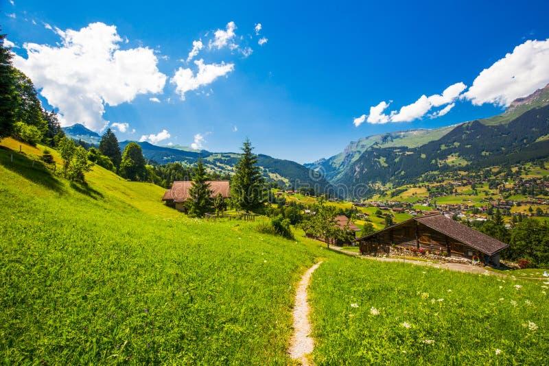 Valle famoso de Grindelwald, bosque verde, chalets y montañas suizas, Suiza de las montañas imágenes de archivo libres de regalías