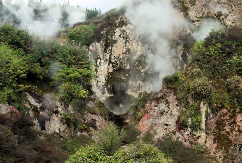 Valle geotérmico ocultado Korako de Orakei: Opinión sobre el cocido al vapor de fumarolas de las rocas al vapor foto de archivo