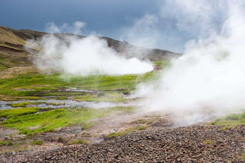 Valle geotermica con vapore vicino a Hveragerdi, sorgenti termali, Islanda immagine stock libera da diritti