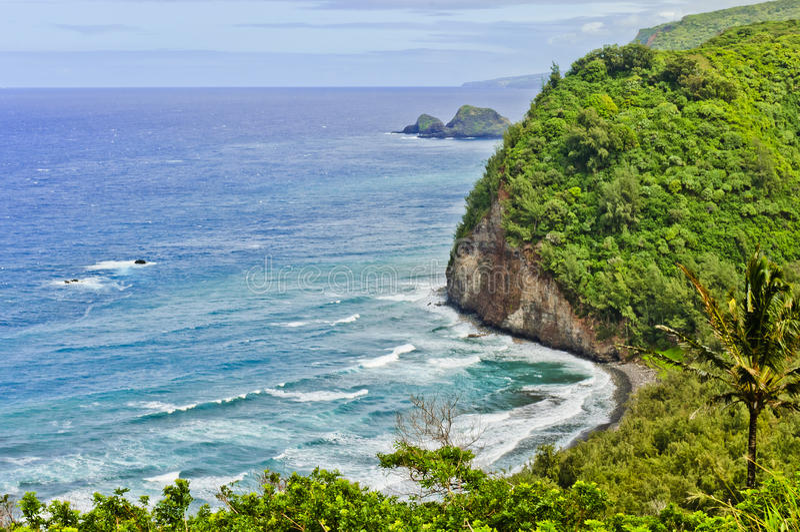 Valle Hawaii de Pololu fotos de archivo