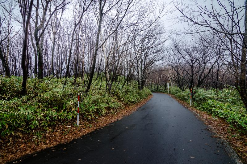 Valle hermoso de Jigokudani o del ` del valle del infierno del ` foto de archivo
