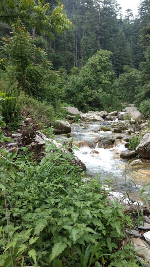 Valle Himachal Pradesh India di Jibhi immagini stock libere da diritti