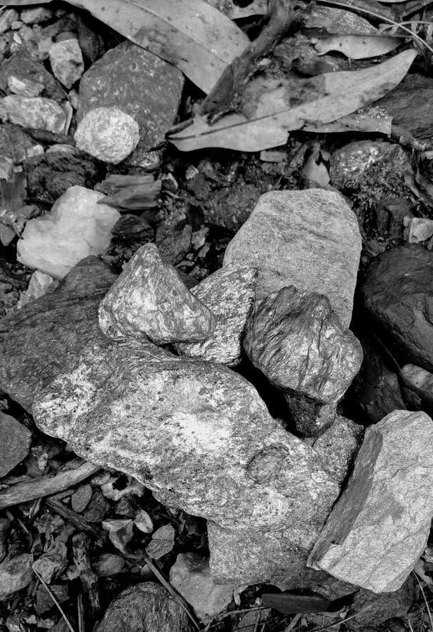 Valle Himachal Pradesh India di Jibhi immagine stock