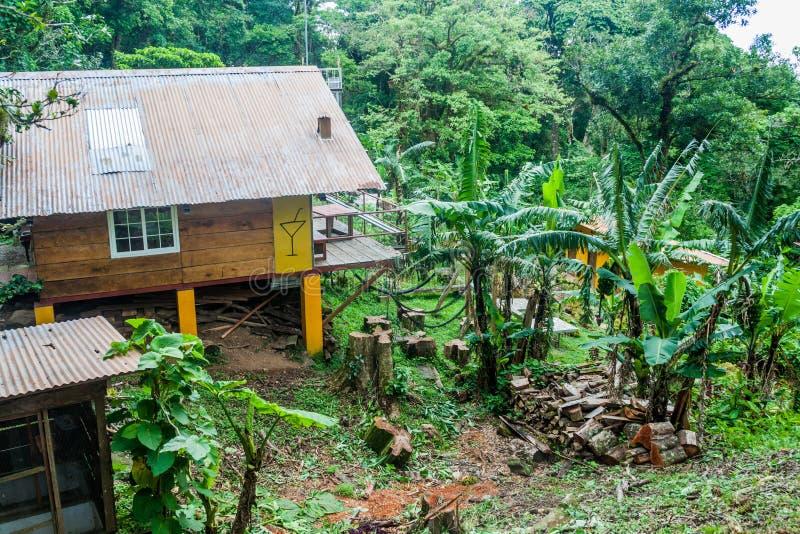 VALLE HORNITO, ПАНАМА - 23-ЬЕ МАЯ 2016: Взгляд потерянного и найденного общежития джунглей в Pana стоковое изображение rf