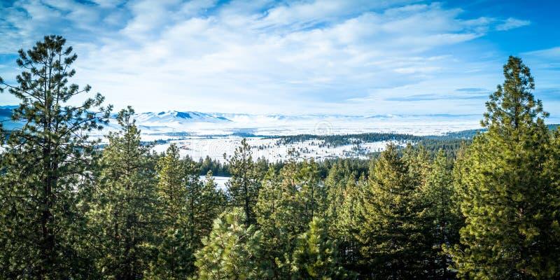 Valle llenado nieve de la misión fotografía de archivo libre de regalías