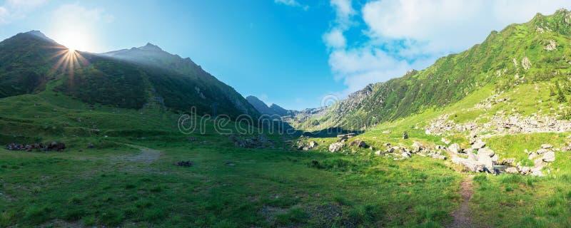 Valle magnífico de las montañas de los fagaras imágenes de archivo libres de regalías