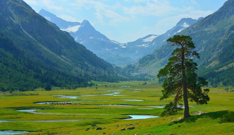 Valle in montagne immagine stock