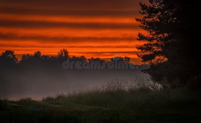 Valle nebbiosa sul tramonto fotografia stock libera da diritti