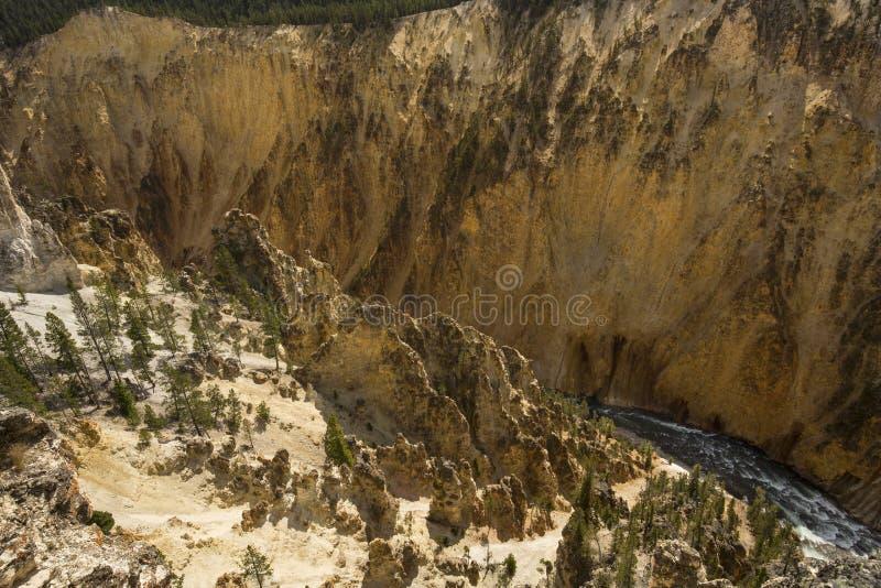 Valle profundo del barranco del río Yellowstone, Wyoming imagen de archivo libre de regalías
