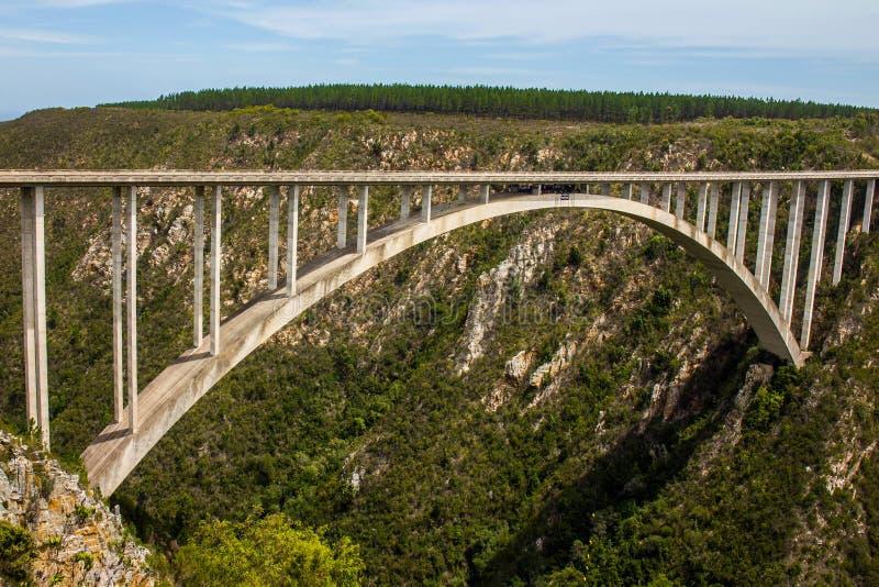 Valle Suráfrica de las naturalezas del puente del salto de Bloukrans Bungy fotografía de archivo