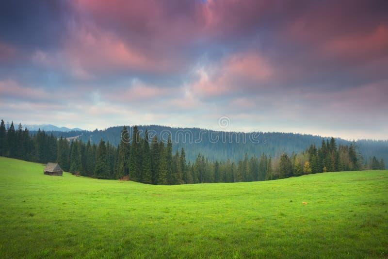 Valle verde all'alba fotografie stock