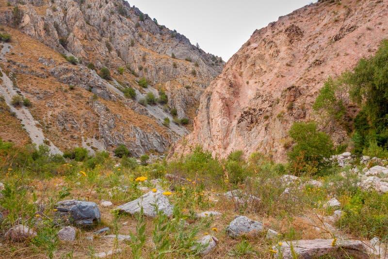 Vallei in de bergen van Oezbekistan stock foto
