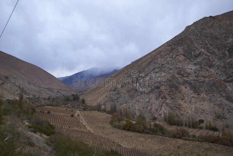 Vallei in Elqui-Vallei royalty-vrije stock afbeeldingen