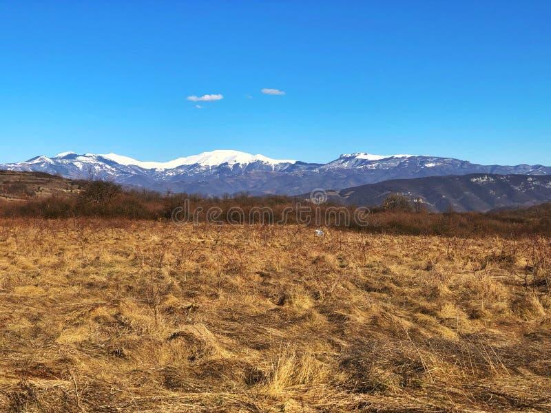 Vallei en bergen stock fotografie