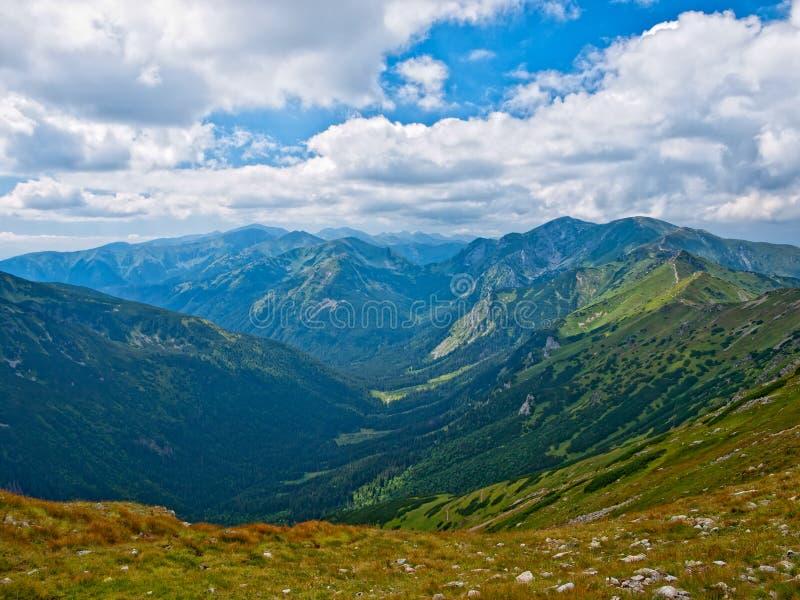 Vallei in Hoge Tatras stock fotografie