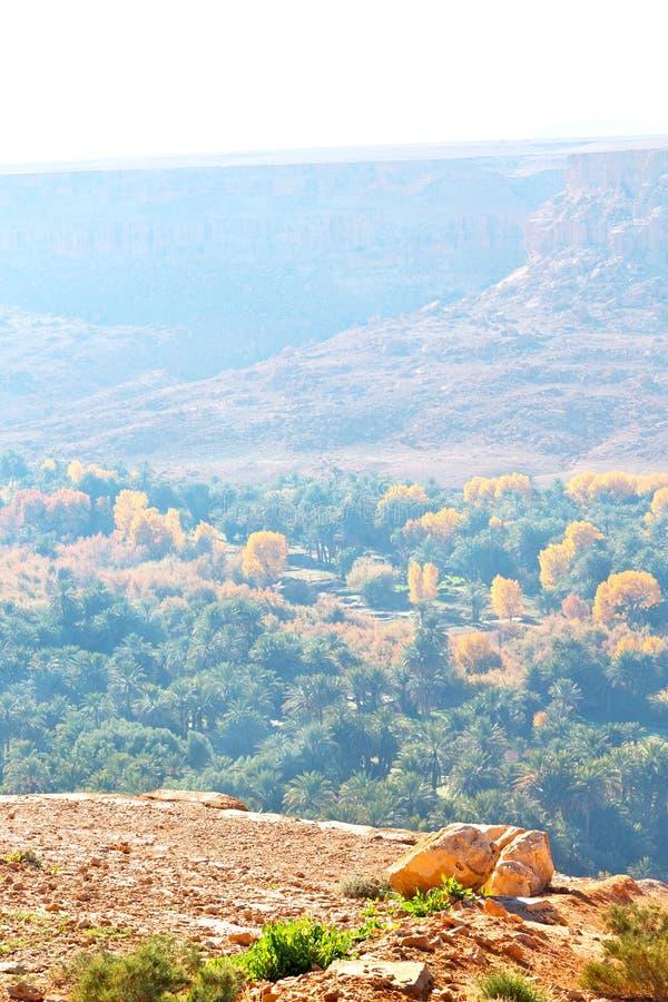 in vallei Marokko Afrika de mist royalty-vrije stock foto's