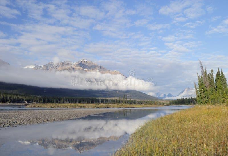 Vallei van de Rivier van Saskatchewan in Canadese Rockies stock foto's