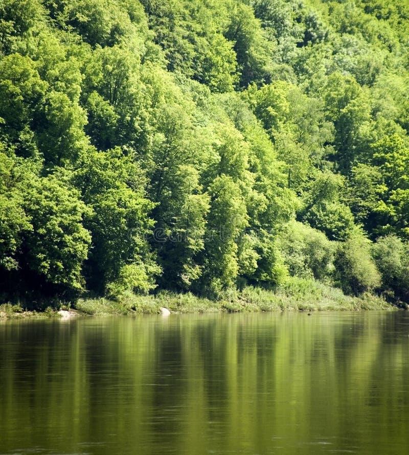 Vallei van de riviery stock foto