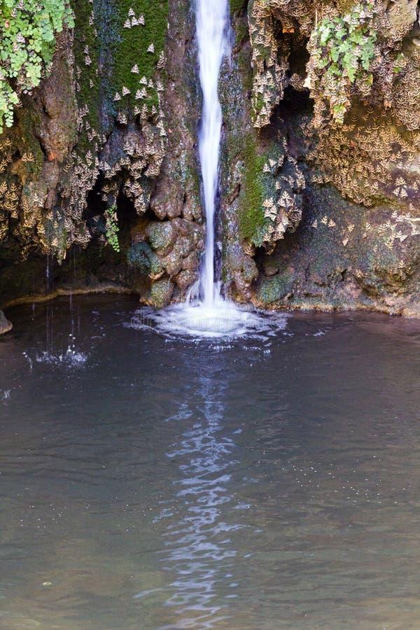 Vallei van Vlinder, Rhodos stock fotografie
