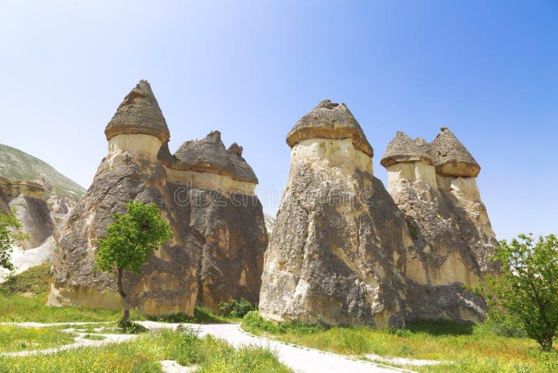 Valleipaddestoelen in Cappadocia royalty-vrije stock foto's