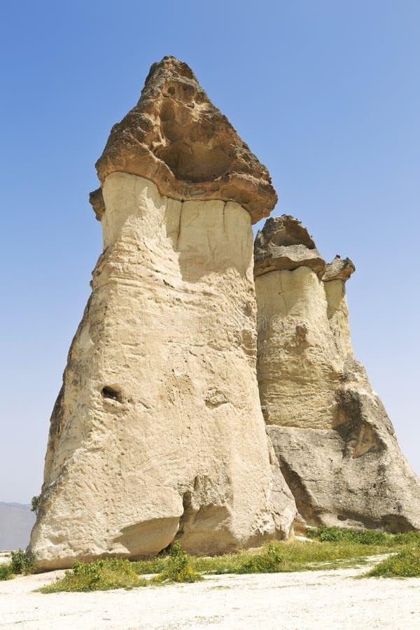 Valleipaddestoelen in Cappadocia stock foto