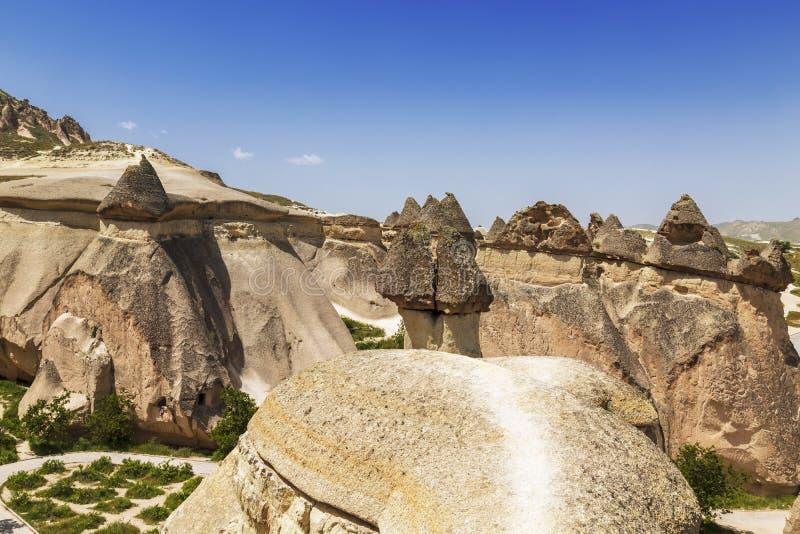 Valleipaddestoelen in Cappadocia, in Turkije royalty-vrije stock fotografie