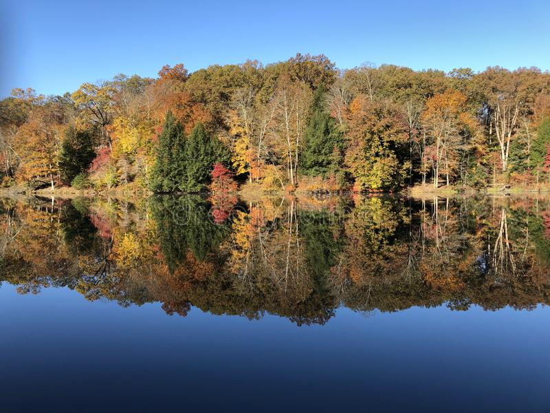 Vallen schoonheid op Rose Lake in Old Man's Cave State Park, Ohio stock afbeelding