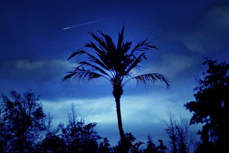 Vallende ster over Hawaï royalty-vrije stock afbeeldingen