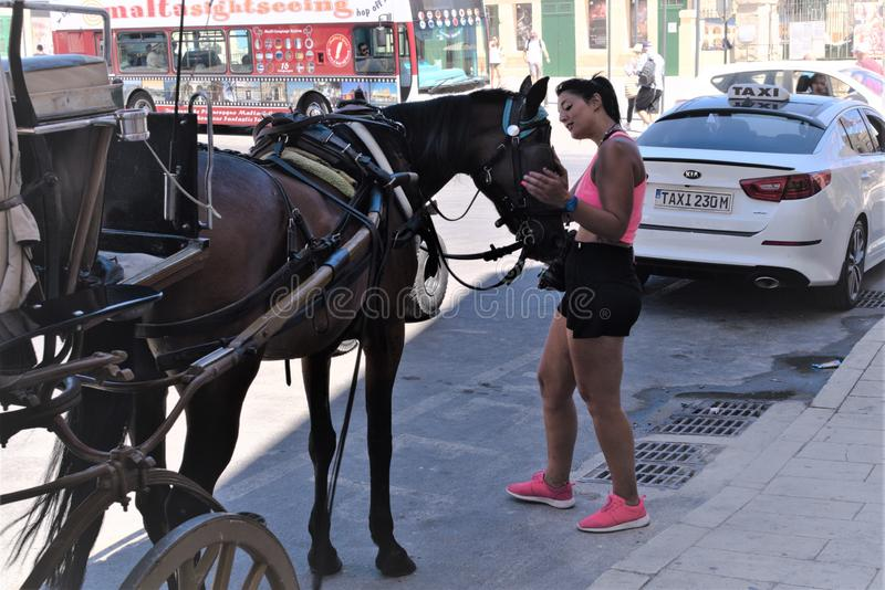 Valletta, Malta, August 2019. People of the island. A woman communicates with a horse in a taxi rank. Diverse people on the island, tourists and locals, men and royalty free stock photography