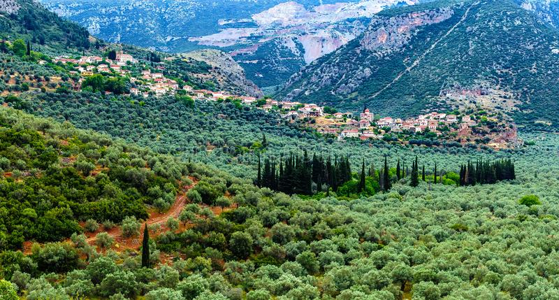 Valley of Amfissa, is a town in Phocis, Greece. Part of the municipality of Delphi royalty free stock photography