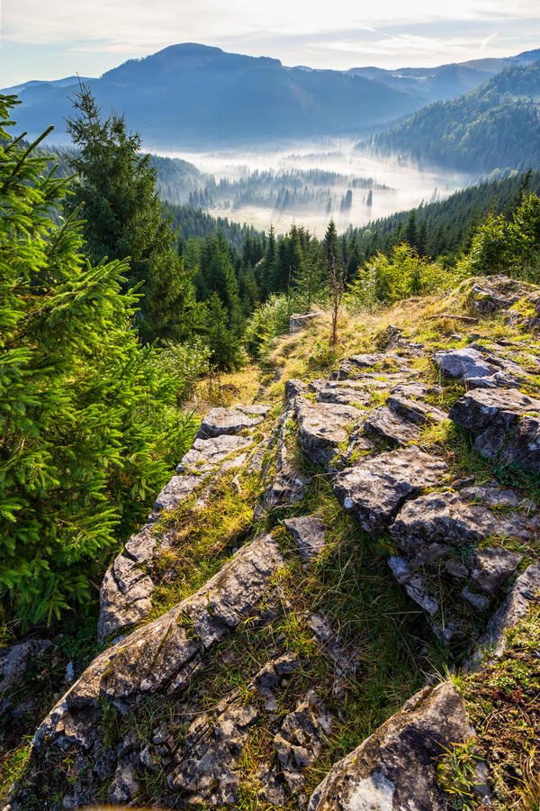 Apuseni Natural Park Romania