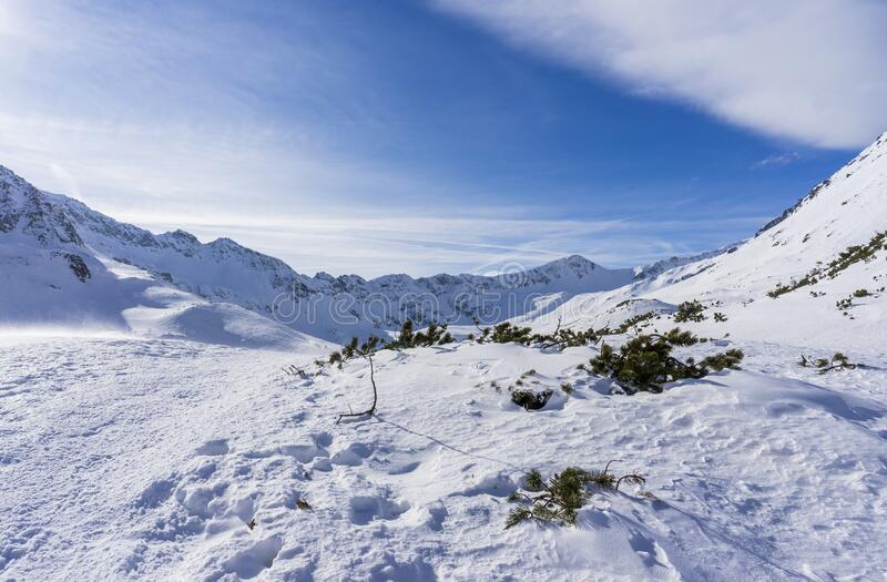Valley of Five Polish Lakes in winter. Tatra mountains.  stock image