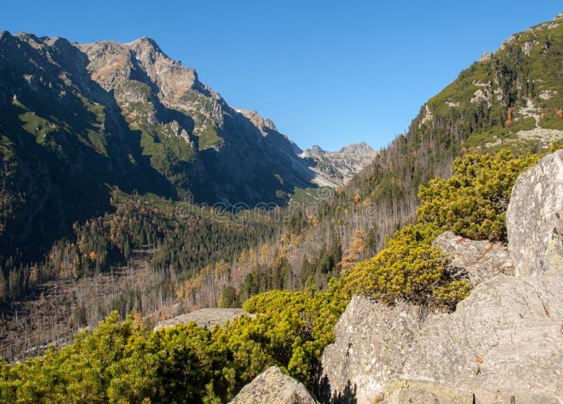 Valley of Five Spis Lakes. High Tatra Mountains, Slovakia royalty free stock photo