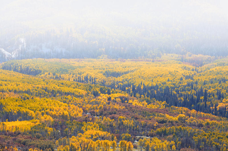Valley at Kebler pass. In Colorado stock photography