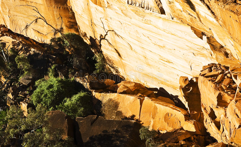Valley in Kings Canyon royalty free stock photography