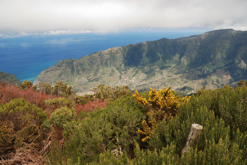 Valley on Madeira, Portugal stock image