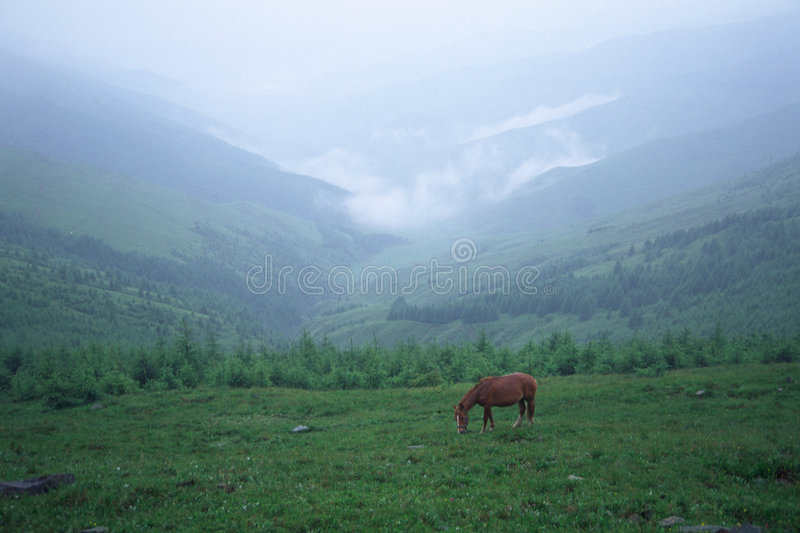 Valley in mist royalty free stock photo