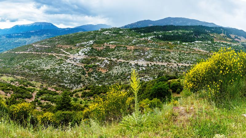 Valley near of Amfissa, Greece. Part of the municipality of Delphi stock images