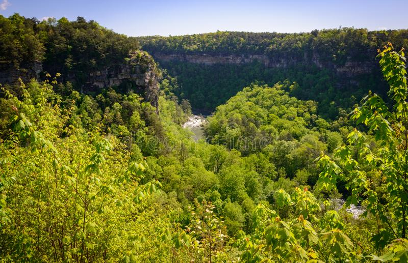 Valley Overlook at Little River Canyon National Preserve stock photos