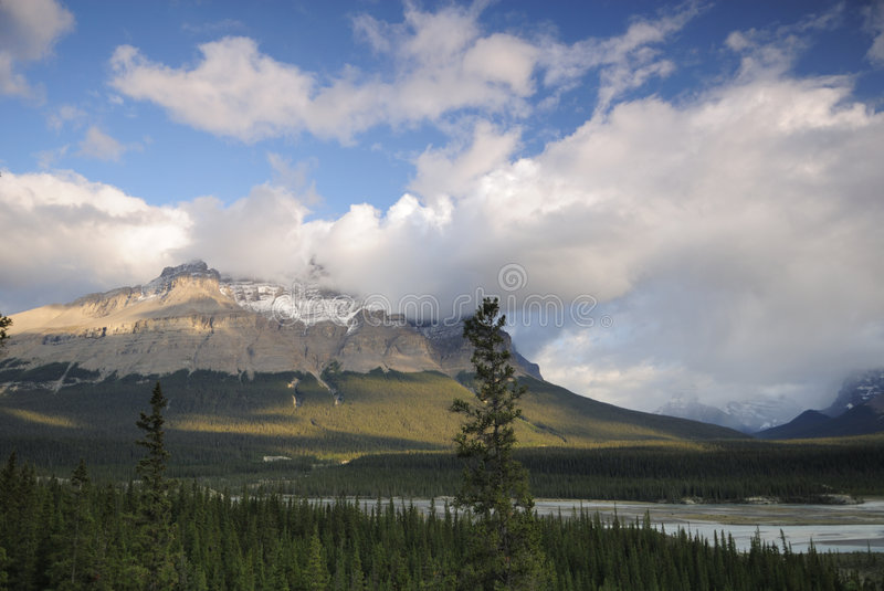 Valley of Saskatchewan River in Canadian Rockies stock image