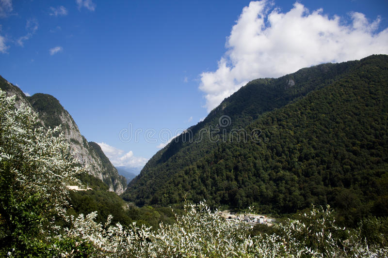 Download Valley in Sochi stock image. Image of evergreen, valley - 83713543
